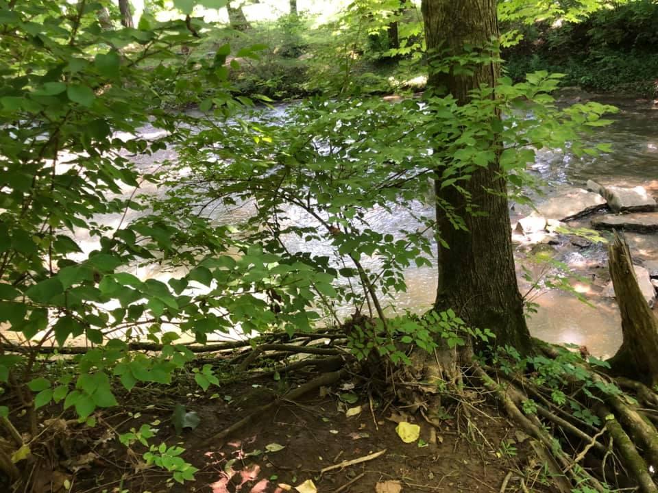 Little Harpeth River, Deerwood Park